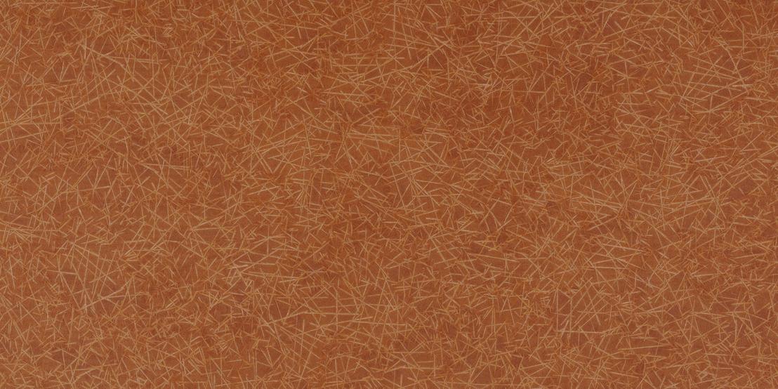 HC22012 Persimmon