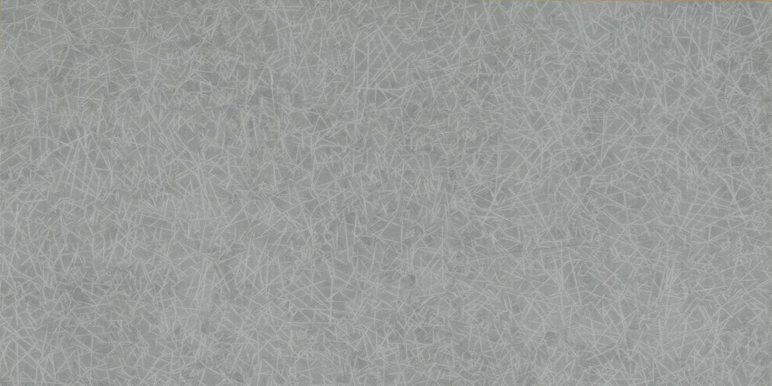 HC22019 Silver